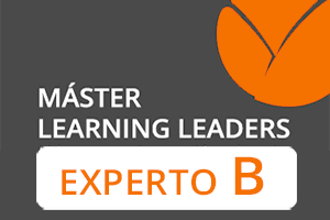 Experto B Learning Leaders