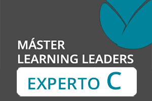 Experto C Learning Leaders
